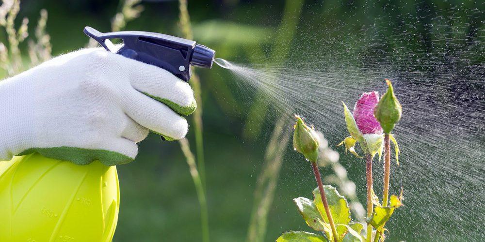 Best Yard Work Gloves