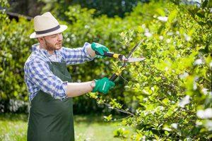 Top 11 Best Yard Work Gloves